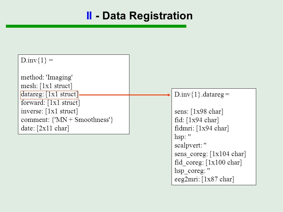 II - Data Registration D.inv{1} = method: Imaging mesh: [1x1 struct]